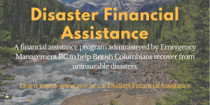 Disaster Financial Assistance explanation